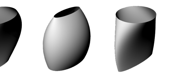 A slice of the randomised forms.